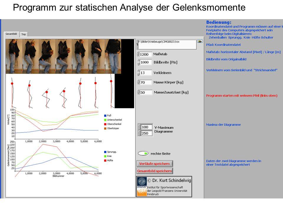 Programm zur statischen Analyse der Gelenksmomente