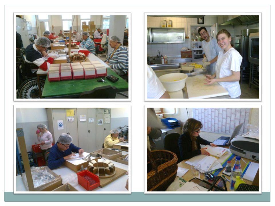 Werkstufencurriculum Inhaltlicher Schwerpunkt: Dienstleistungen im Bereich Hauswirtschaft / Nahrungsmittel Kompetenzorientierter Unterricht Fächer / Themen / Trainings