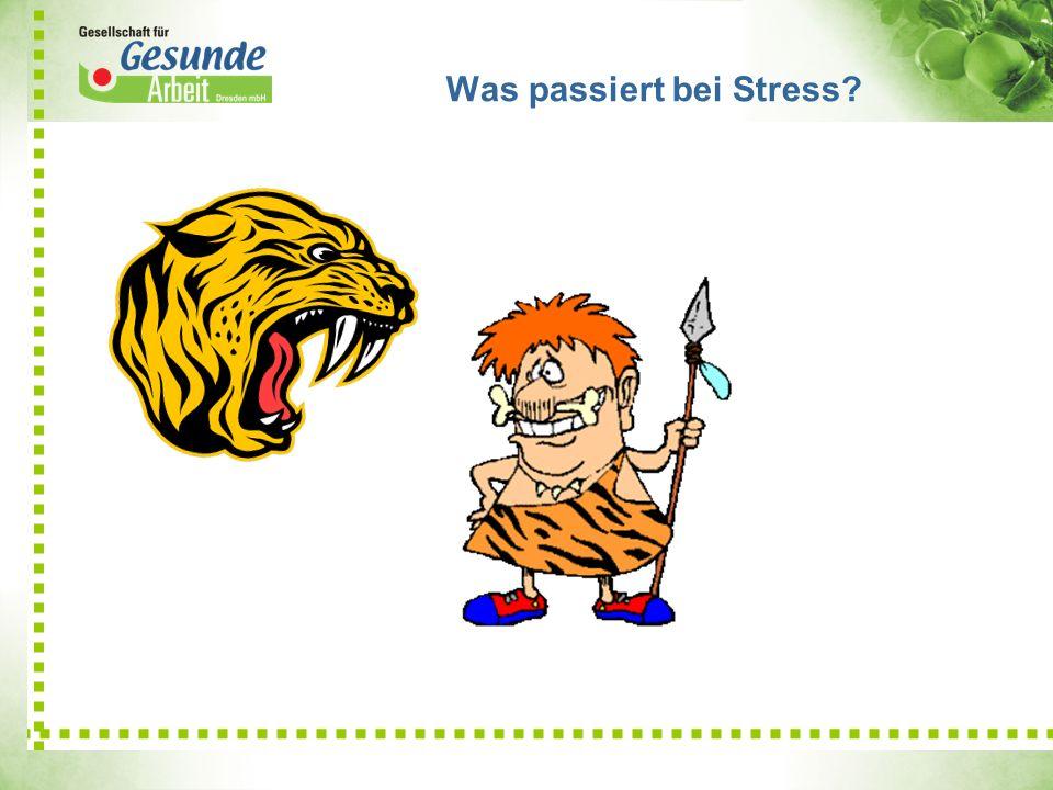 Was passiert bei Stress?