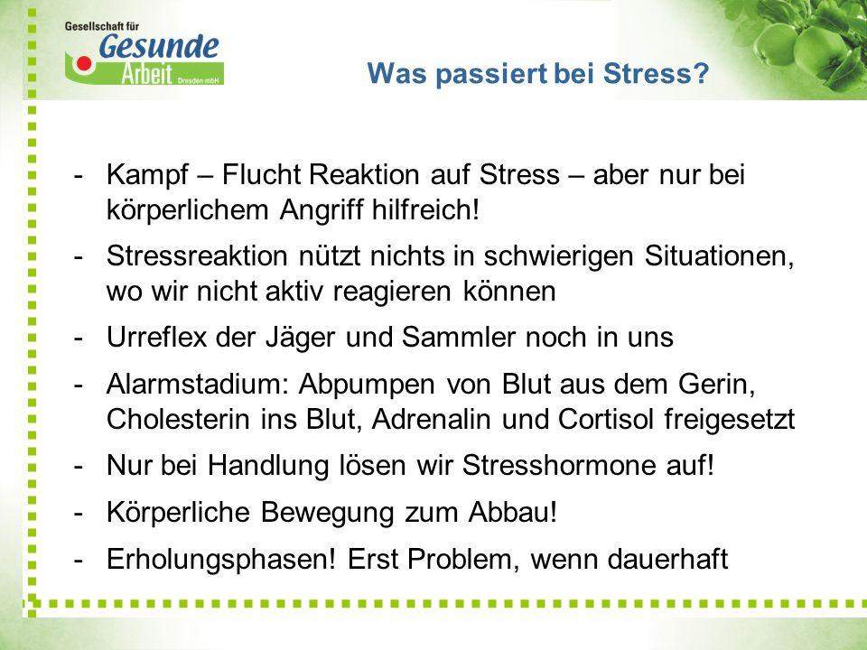 -Kampf – Flucht Reaktion auf Stress – aber nur bei körperlichem Angriff hilfreich! -Stressreaktion nützt nichts in schwierigen Situationen, wo wir nic