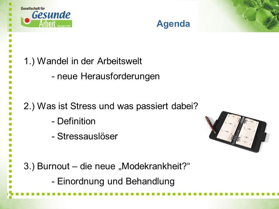 1.) Wandel in der Arbeitswelt - neue Herausforderungen 2.) Was ist Stress und was passiert dabei? - Definition - Stressauslöser 3.) Burnout – die neue