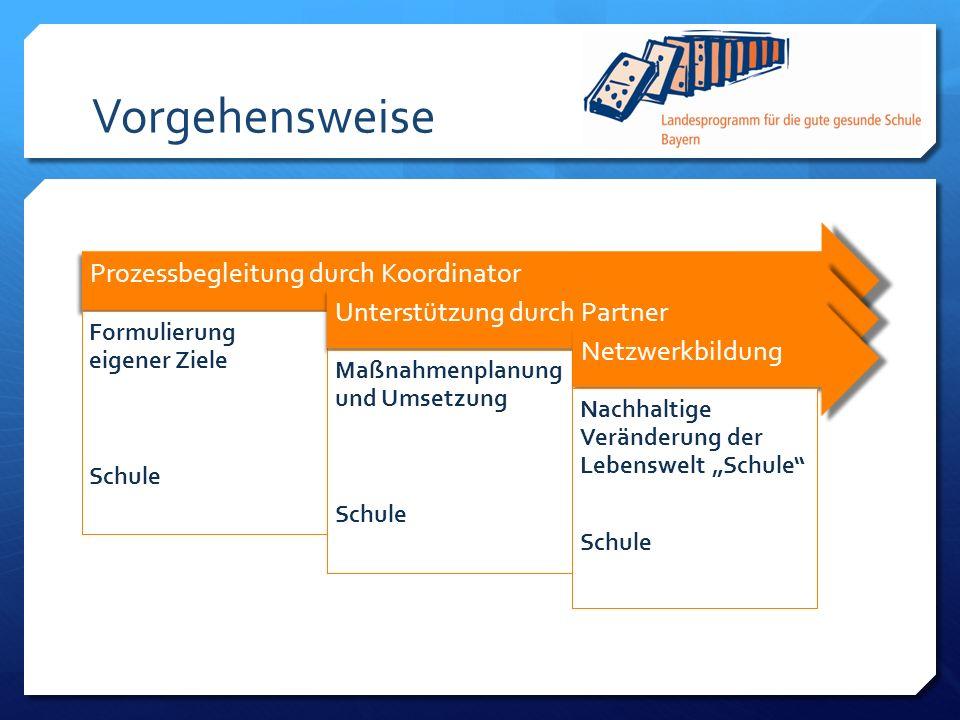 Vorgehensweise Prozessbegleitung durch Koordinator Formulierung eigener Ziele Schule Unterstützung durch Partner Maßnahmenplanung und Umsetzung Schule