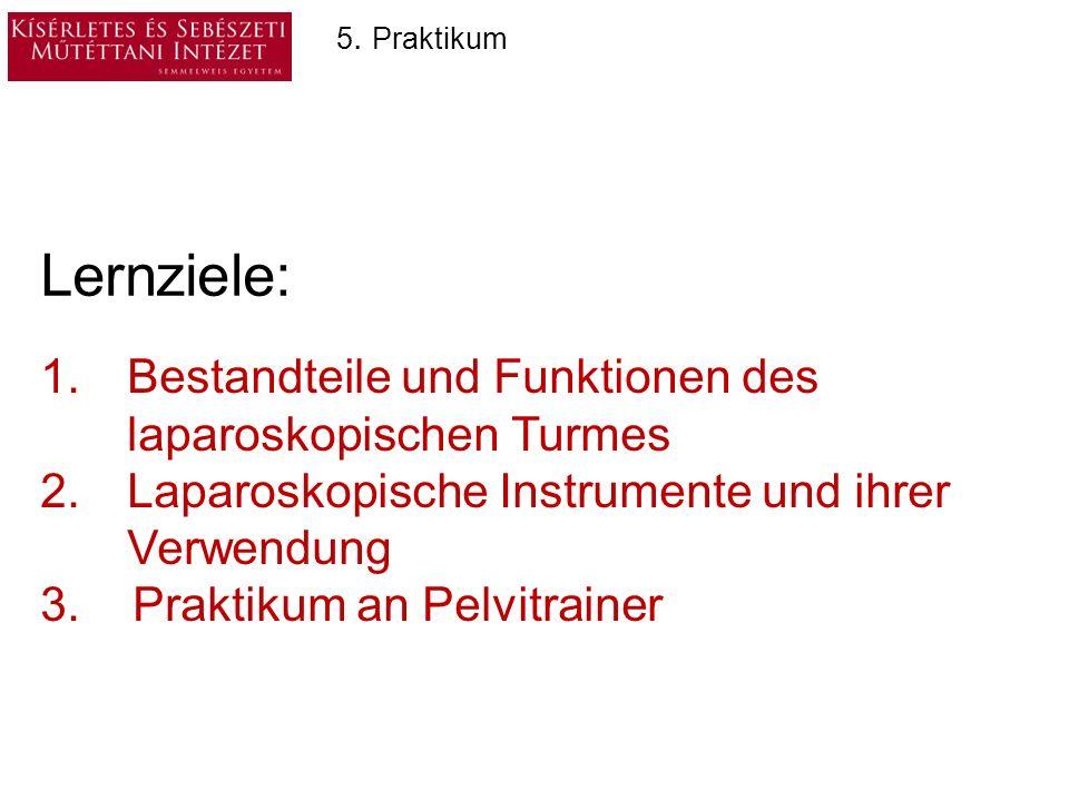Laparoskopische Instrumente 6.Nahtinstrumente 5.