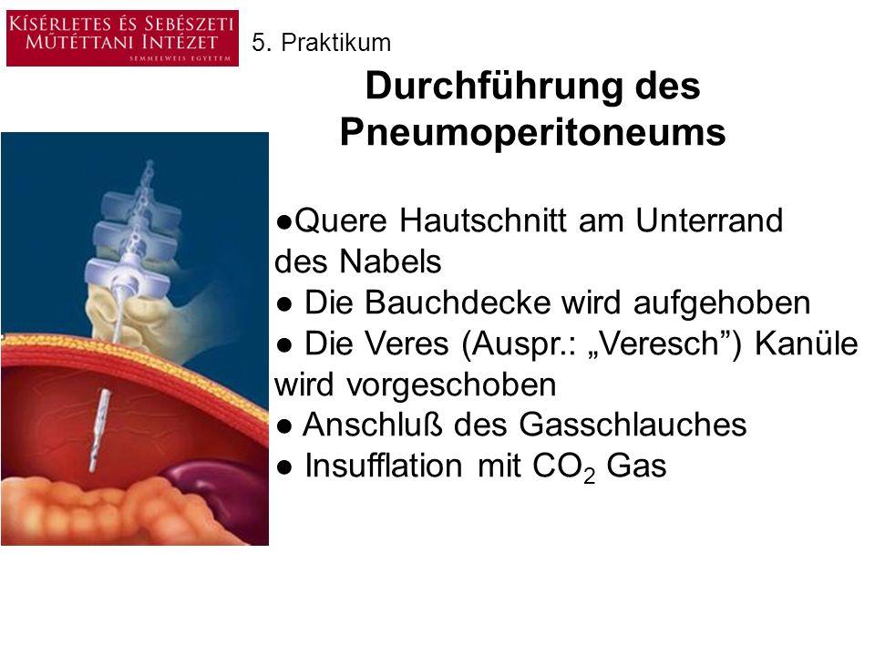 Ein / ausschalten Saug (Hgmm) Spül (Hgmm) Steril physiologische Kochsalzlösung Ausgesaugte Flüßigkeit 5.
