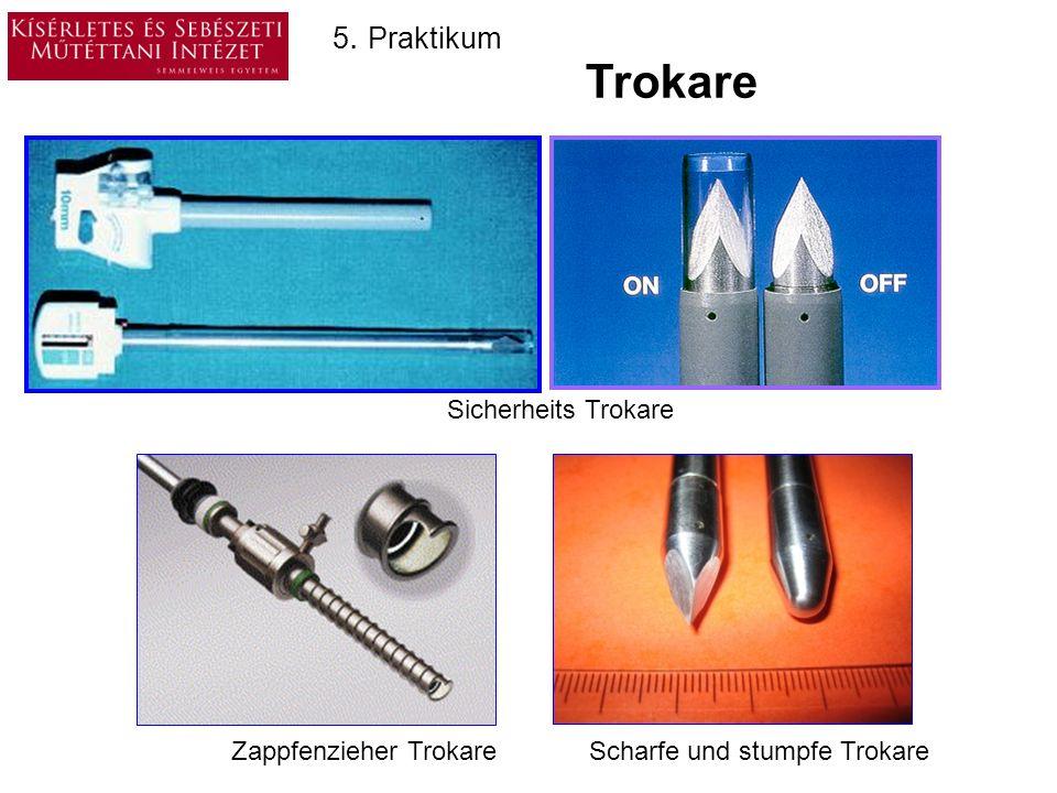 Laproskopische Instrumente 2. Scheren Biopsie- Schere Preparier Schere 5. Praktikum Hacken schere