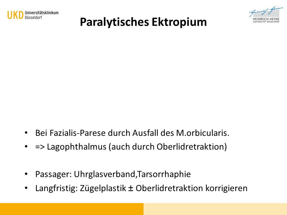 Paralytisches Ektropium Bei Fazialis-Parese durch Ausfall des M.orbicularis. => Lagophthalmus (auch durch Oberlidretraktion) Passager: Uhrglasverband,
