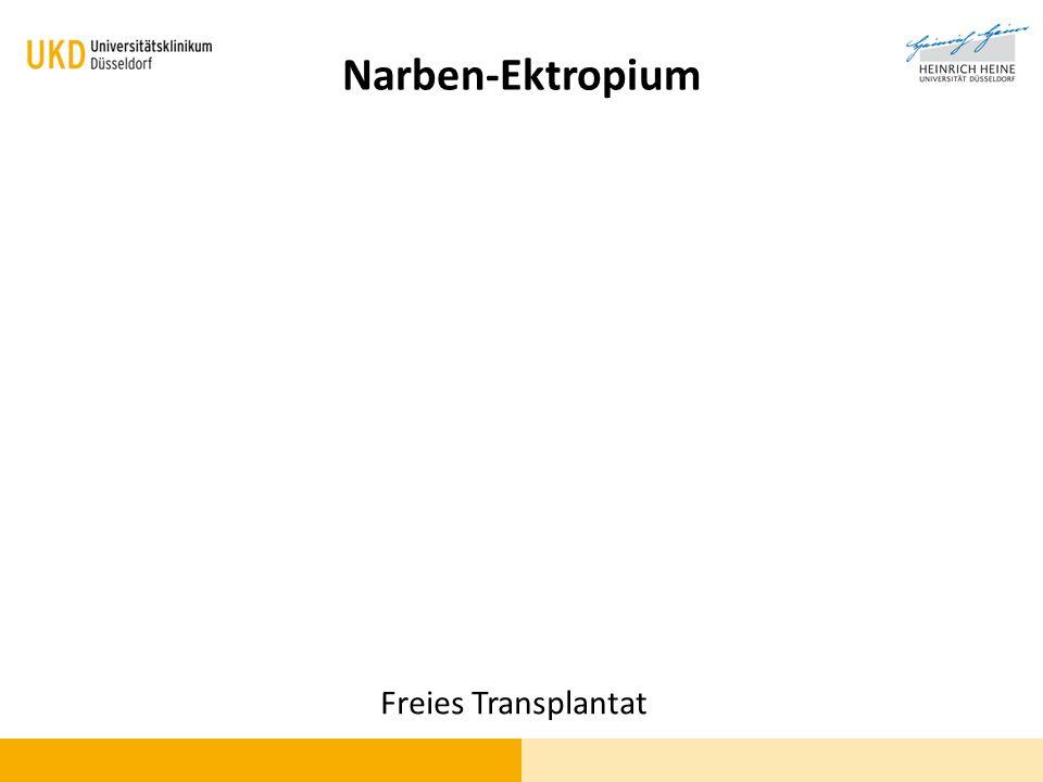 Freies Transplantat Narben-Ektropium
