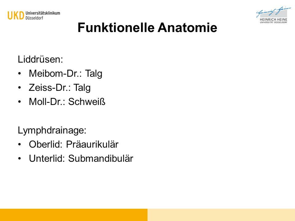 Funktionelle Anatomie Liddrüsen: Meibom-Dr.: Talg Zeiss-Dr.: Talg Moll-Dr.: Schweiß Lymphdrainage: Oberlid: Präaurikulär Unterlid: Submandibulär