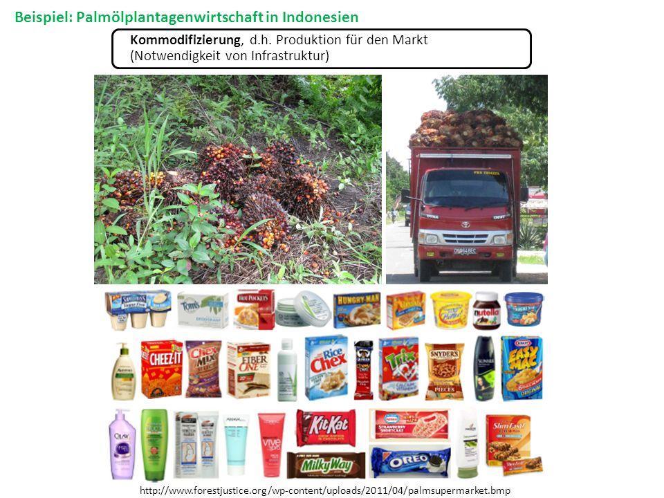 Kommodifizierung, d.h. Produktion für den Markt (Notwendigkeit von Infrastruktur) http://www.forestjustice.org/wp-content/uploads/2011/04/palmsupermar