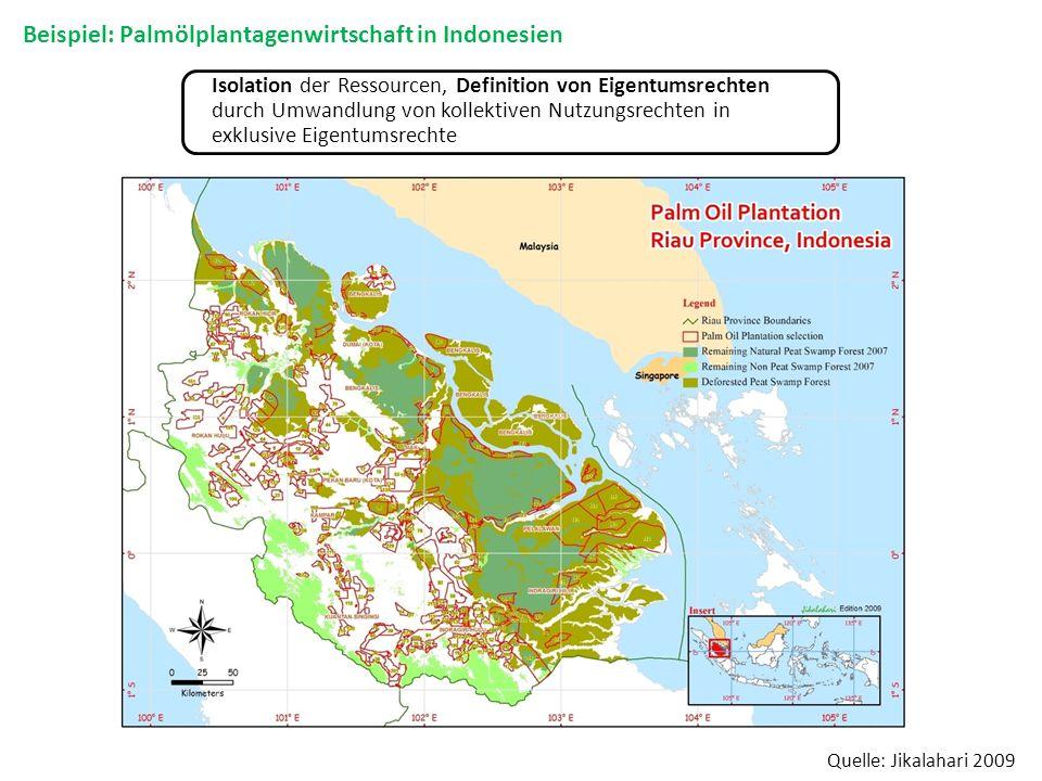 Isolation der Ressourcen, Definition von Eigentumsrechten durch Umwandlung von kollektiven Nutzungsrechten in exklusive Eigentumsrechte Beispiel: Palm