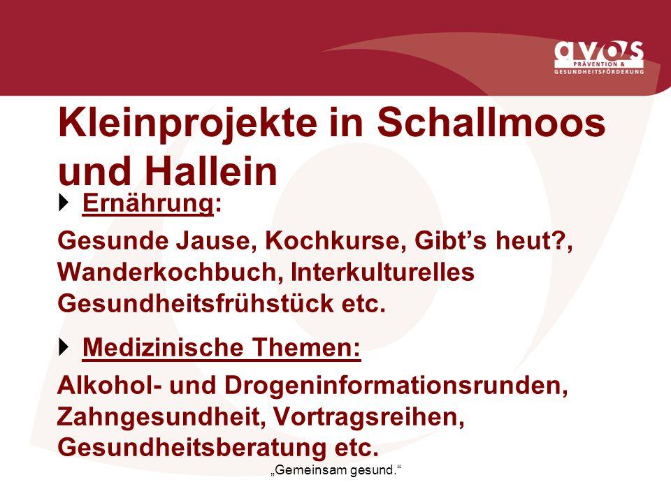 Kleinprojekte in Schallmoos und Hallein Ernährung: Gesunde Jause, Kochkurse, Gibts heut?, Wanderkochbuch, Interkulturelles Gesundheitsfrühstück etc. M