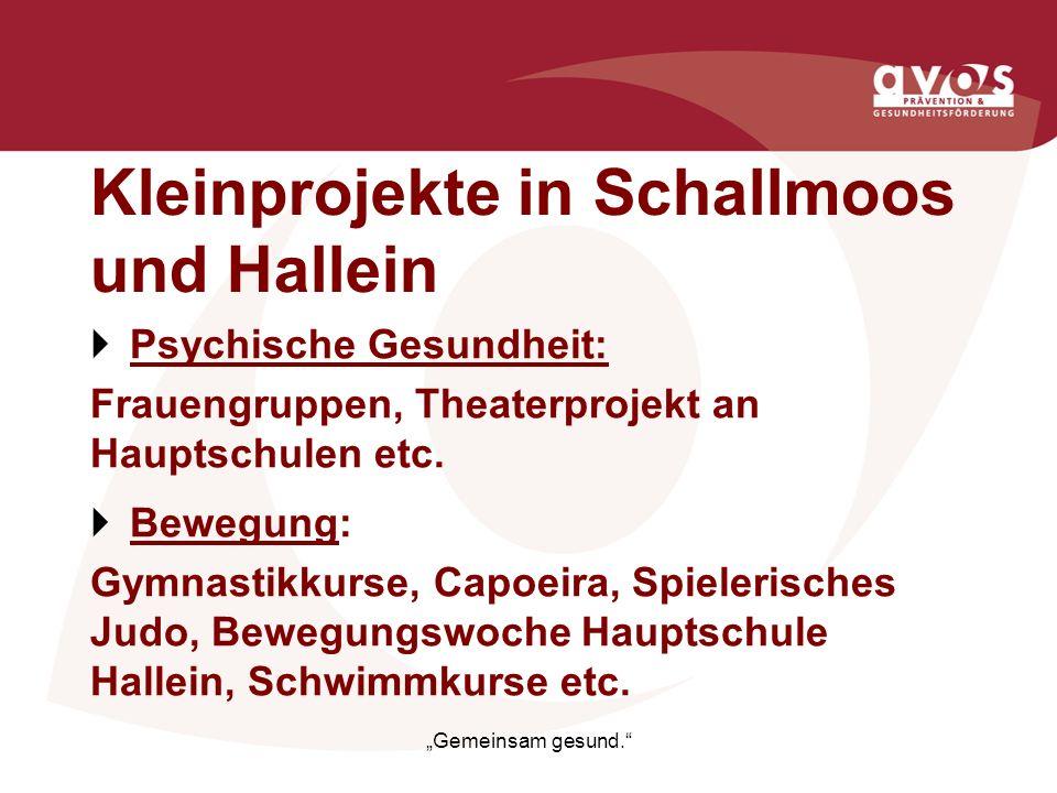 Kleinprojekte in Schallmoos und Hallein Psychische Gesundheit: Frauengruppen, Theaterprojekt an Hauptschulen etc. Bewegung: Gymnastikkurse, Capoeira,