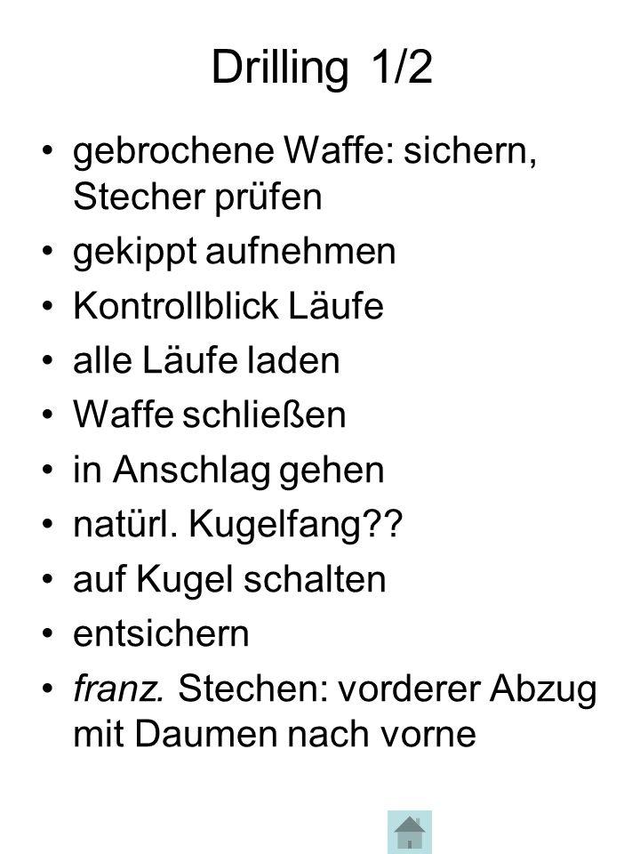 Drilling 2/2 Halt – Bock springt ab!!.