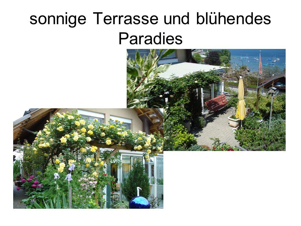 sonnige Terrasse und blühendes Paradies