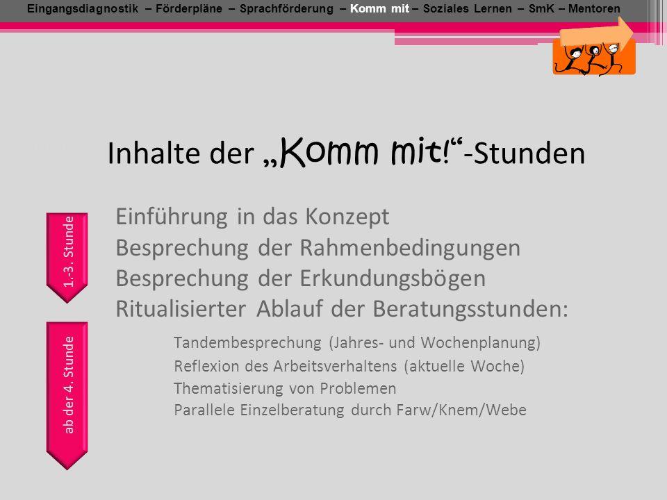 Einführung in das Konzept Besprechung der Rahmenbedingungen Besprechung der Erkundungsbögen Ritualisierter Ablauf der Beratungsstunden: Tandembesprech