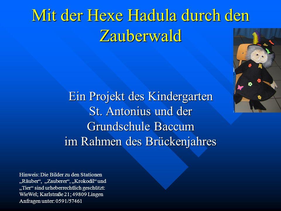 Mit der Hexe Hadula durch den Zauberwald Ein Projekt des Kindergarten St. Antonius und der Grundschule Baccum im Rahmen des Brückenjahres Hinweis: Die