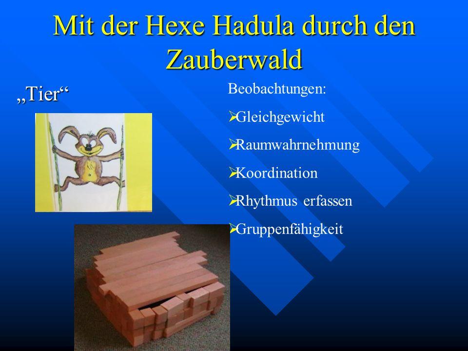 Mit der Hexe Hadula durch den Zauberwald Tier Beobachtungen: Gleichgewicht Raumwahrnehmung Koordination Rhythmus erfassen Gruppenfähigkeit