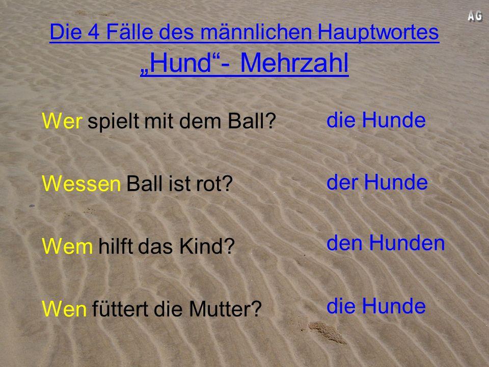 Die 4 Fälle des männlichen Hauptwortes Hund- Mehrzahl 1.Fall: Die Hunde spielen mit dem Ball. 2.Fall: Der Ball der Hunde ist rot. 3.Fall: Das Kind hil