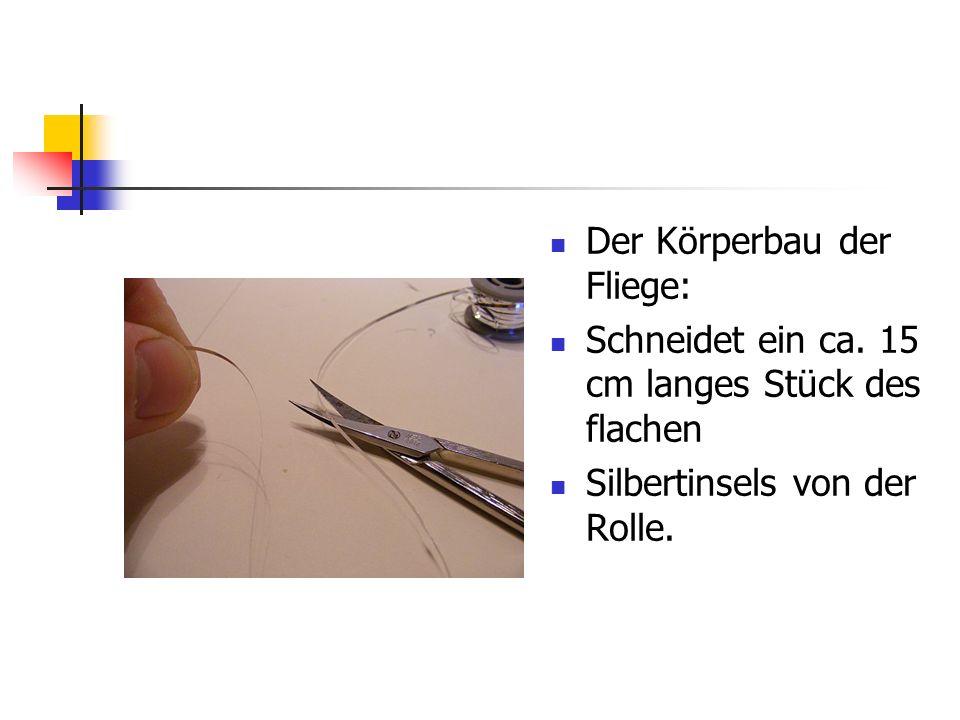 www.das-grosse-schwedenforum.de Einbinden des flachen Tinsels, wie gehabt, d.h.: 3-5 Wicklungen.