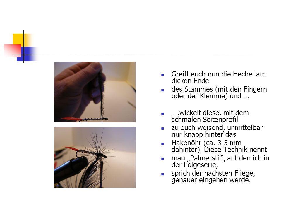 www.das-grosse-schwedenforum.de Wie ihr seht, stellen sich die Fiebern der Hechel beinahe senkrecht stehend, um den Hakenschenkel.