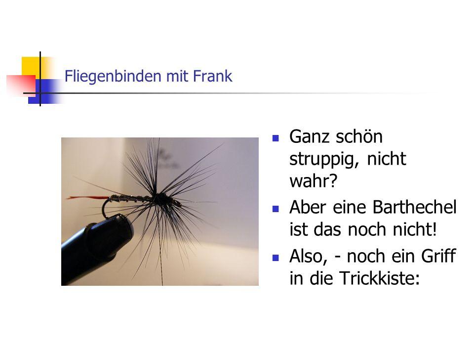 Streamer Alexandra von Frank Orlowski Mit den Daumen und Zeigefingern beider Hände (natürlich abwechselnd), kämme ich die Fiebern von oben, nach unten.