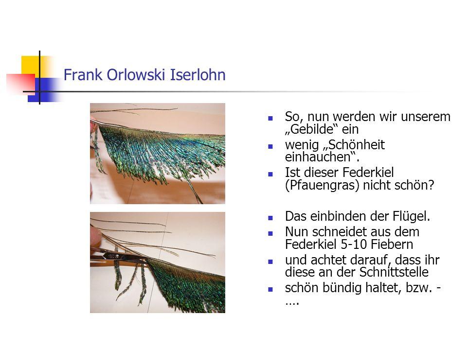www.das-grosse-schwedenforum.de …..einen Schnitt vornehmt.