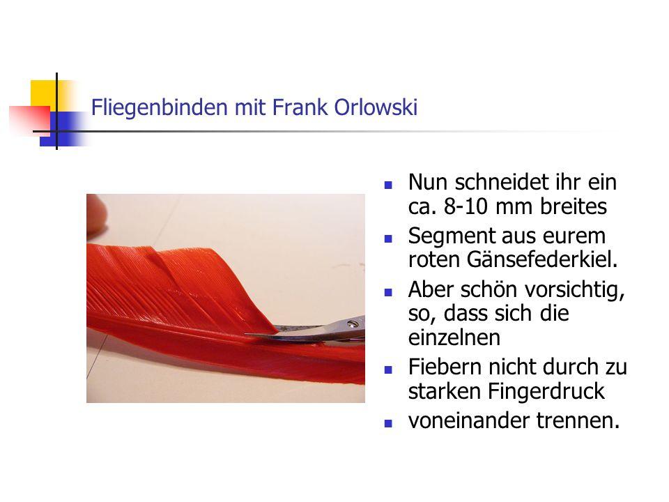 www.das-grosse-schwedenforum.de Zur weiteren Verarbeitung solltet ihr das Segment so zwischen den Fingern der linken Hand halten.