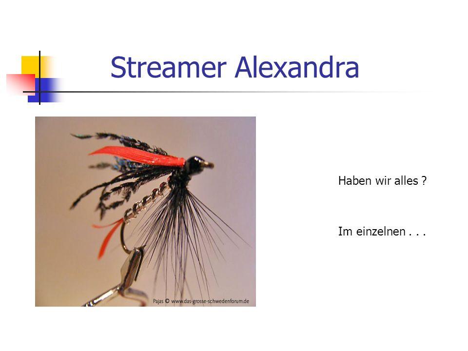 Fliegenbinden mit Frank Streamerhaken Größe 8 - 10