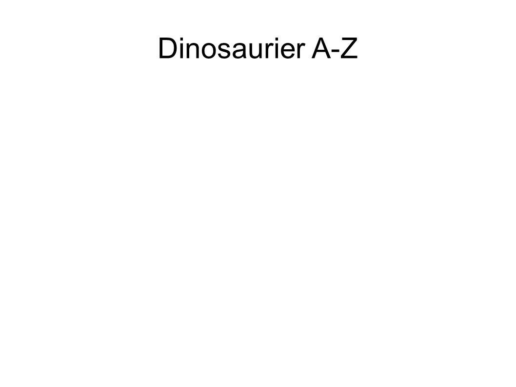 U- Utahraptor Hatte einen muskulösen Körperbau und eine 38 Zentimeter lange Sichelklaue an beiden Füßen.