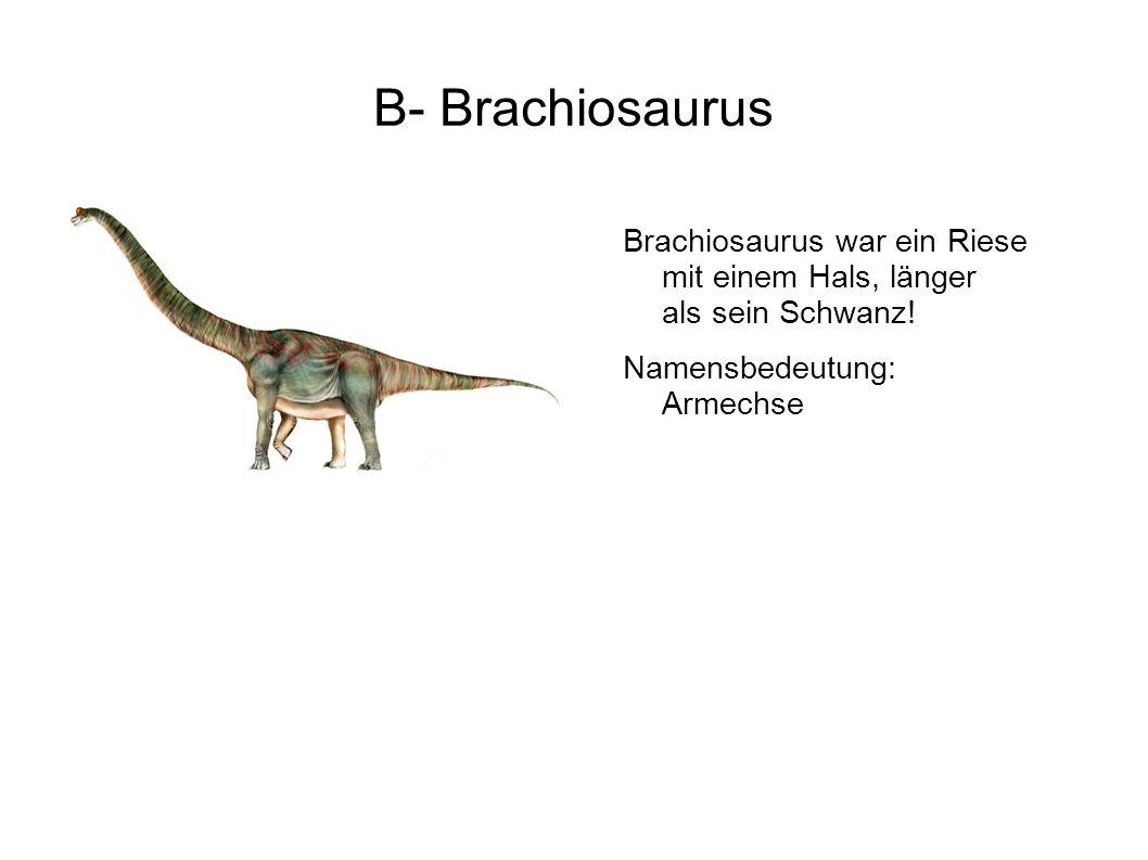 M- Maiasaura Ein Dino, das sehr gut mit seinen Babys umging. Namensbedeutung: Gute-Mutter-Echse