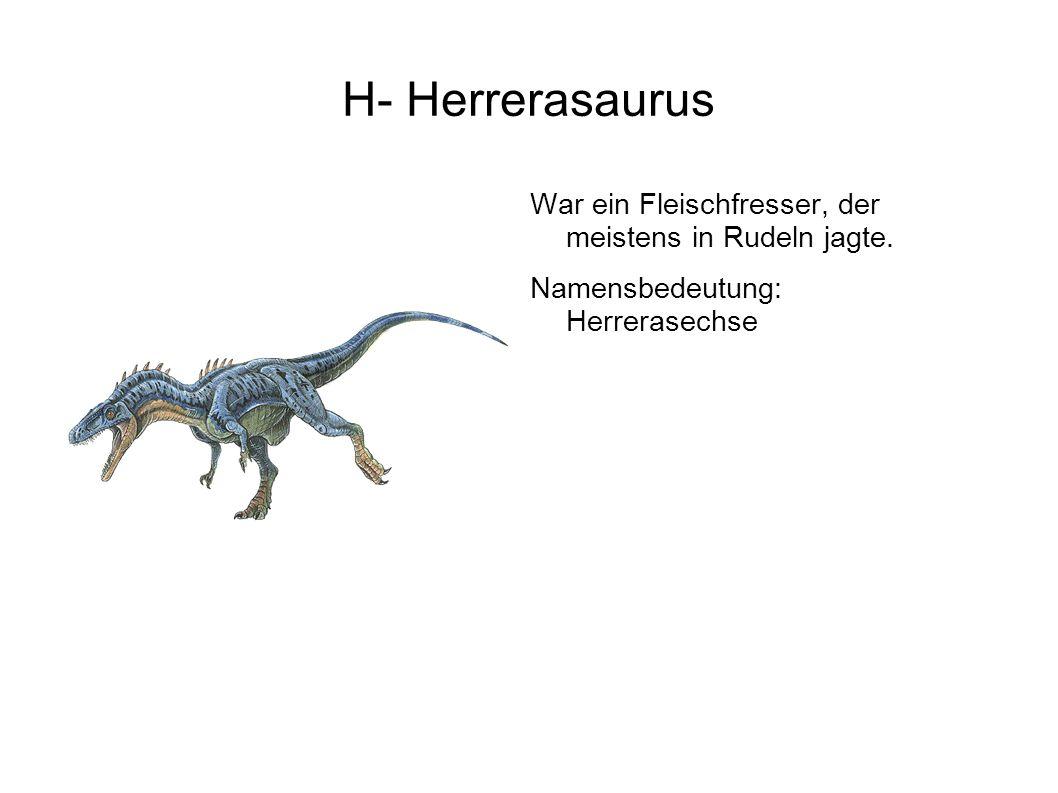I- Iguanodon Der erste Dinosaurier, der je entdeckt wurde.