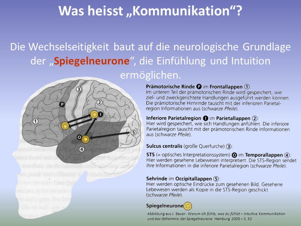 Abbildung aus J. Bauer: Warum ich fühle, was du fühlst – Intuitive Kommunikation und das Geheimnis der Spiegelneurone. Hamburg 2005 – S. 52 Die Wechse