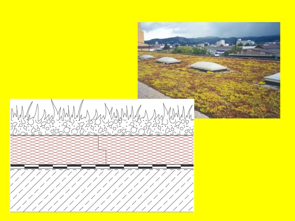 So ist die einlagige Abdichtung nur mit bestimmten Bahnenarten (Materialien) möglich.