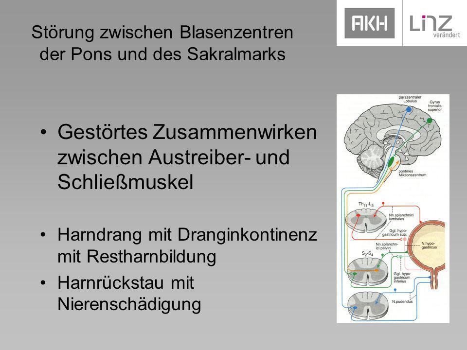 Störung zwischen Blasenzentren der Pons und des Sakralmarks Gestörtes Zusammenwirken zwischen Austreiber- und Schließmuskel Harndrang mit Dranginkonti