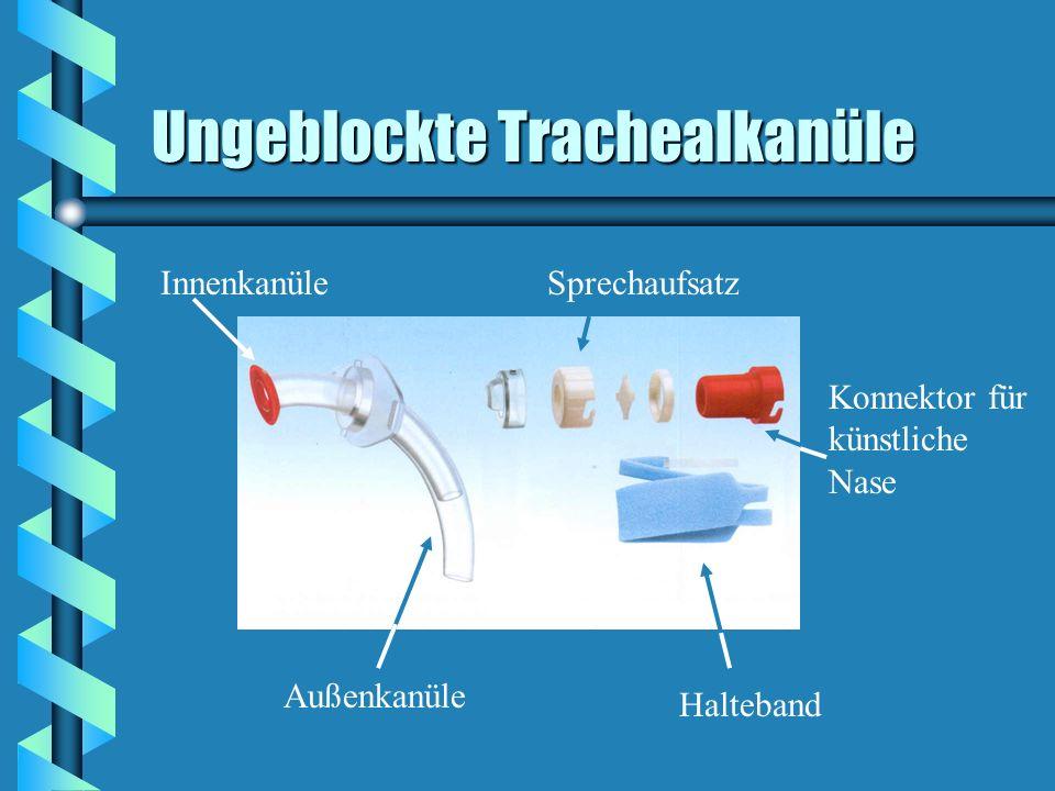 Ungeblockte Trachealkanüle Außenkanüle InnenkanüleSprechaufsatz Konnektor für künstliche Nase Halteband