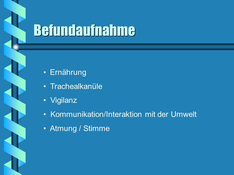 Befundaufnahme Ernährung Trachealkanüle Vigilanz Kommunikation/Interaktion mit der Umwelt Atmung / Stimme