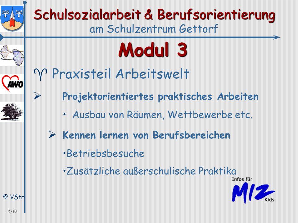 Schulsozialarbeit & Berufsorientierung am Schulzentrum Gettorf © VStr - 9/19 - Modul 3 ^ Praxisteil Arbeitswelt Projektorientiertes praktisches Arbeit