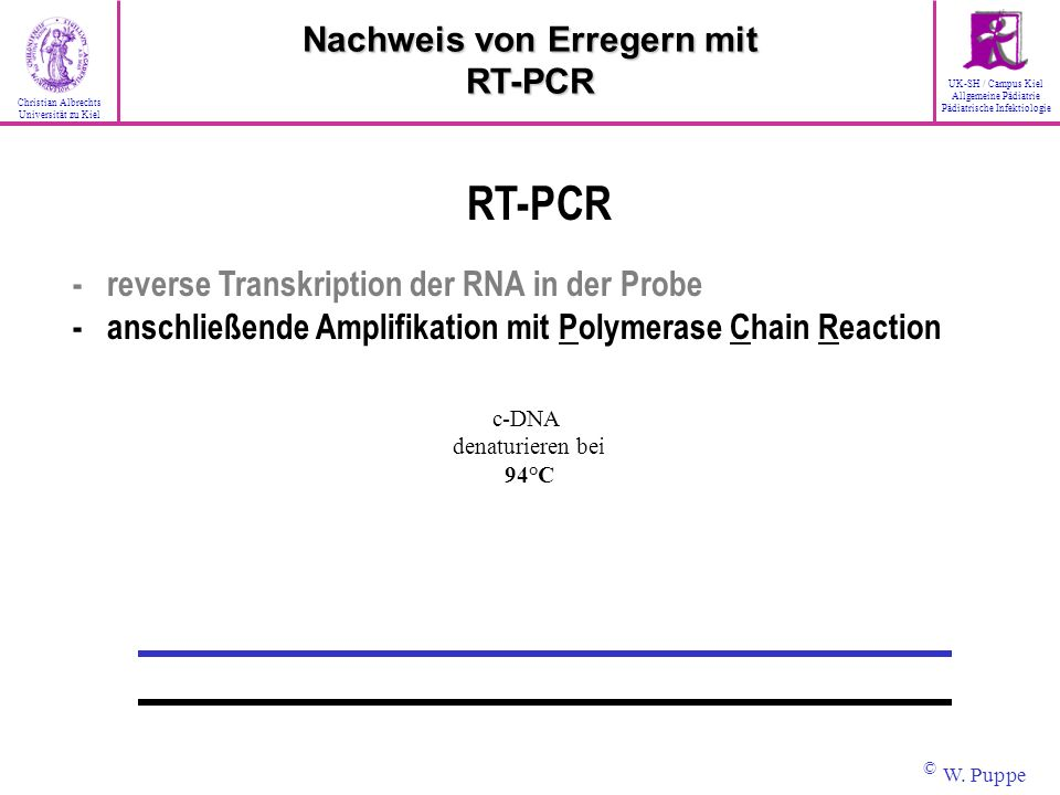 c-DNA denaturieren bei 94°C RT-PCR - reverse Transkription der RNA in der Probe - anschließende Amplifikation mit Polymerase Chain Reaction Nachweis v