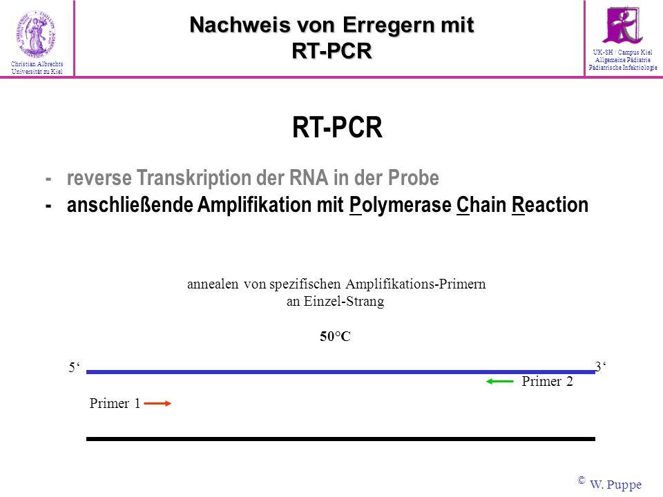 annealen von spezifischen Amplifikations-Primern an Einzel-Strang 50°C Primer 1 Primer 2 3 5 RT-PCR - reverse Transkription der RNA in der Probe - ans