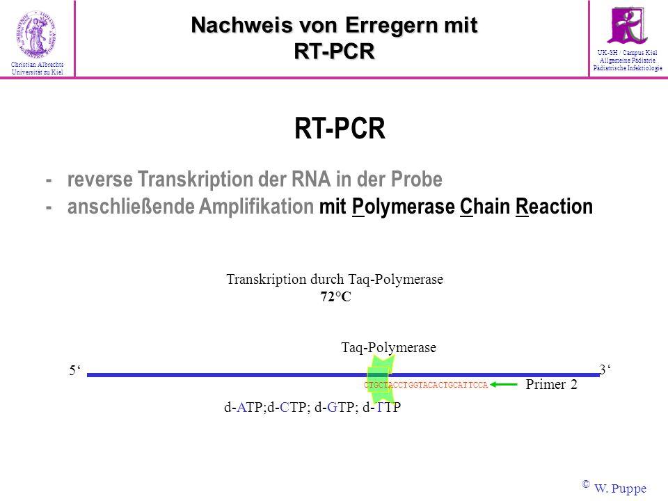 Taq-Polymerase d-ATP;d-CTP; d-GTP; d-TTP Primer 2 3 5 CTGCTACCTGGTACACTGCATTCCA Transkription durch Taq-Polymerase 72°C RT-PCR - reverse Transkription