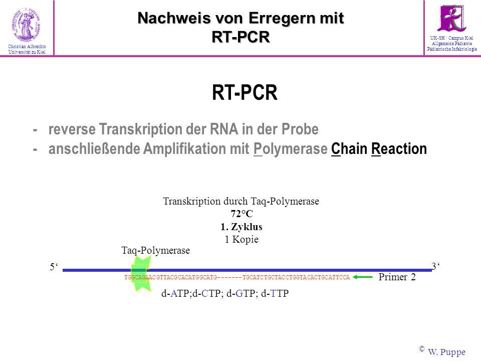 Taq-Polymerase d-ATP;d-CTP; d-GTP; d-TTP Primer 2 3 5 TGGCAGAACGTTACGCACATGGCATG-------TGCATCTGCTACCTGGTACACTGCATTCCA Transkription durch Taq-Polymera