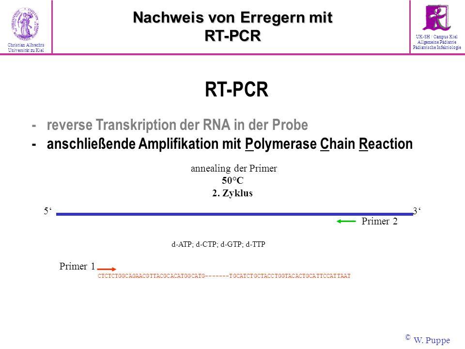 annealing der Primer 50°C 2. Zyklus Primer 2 35 d-ATP; d-CTP; d-GTP; d-TTP RT-PCR - reverse Transkription der RNA in der Probe - anschließende Amplifi