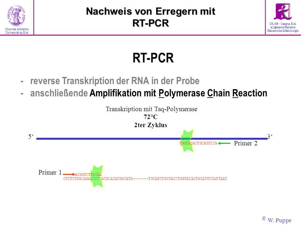 Transkription mit Taq-Polymerase 72°C 2ter Zyklus CTCTCTGGCAGAACGTTACGCACATGGCATG-------TGCATCTGCTACCTGGTACACTGCATTCCATTAAT Primer 2 35 Primer 1 TGGTA