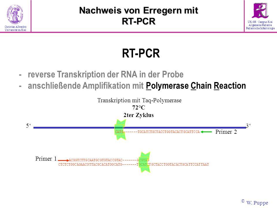 Transkription mit Taq-Polymerase 72°C 2ter Zyklus Primer 2 35 ACGGTCTTGCAATGCGTGTACCGTAC-------ACGTAG RT-PCR - reverse Transkription der RNA in der Pr