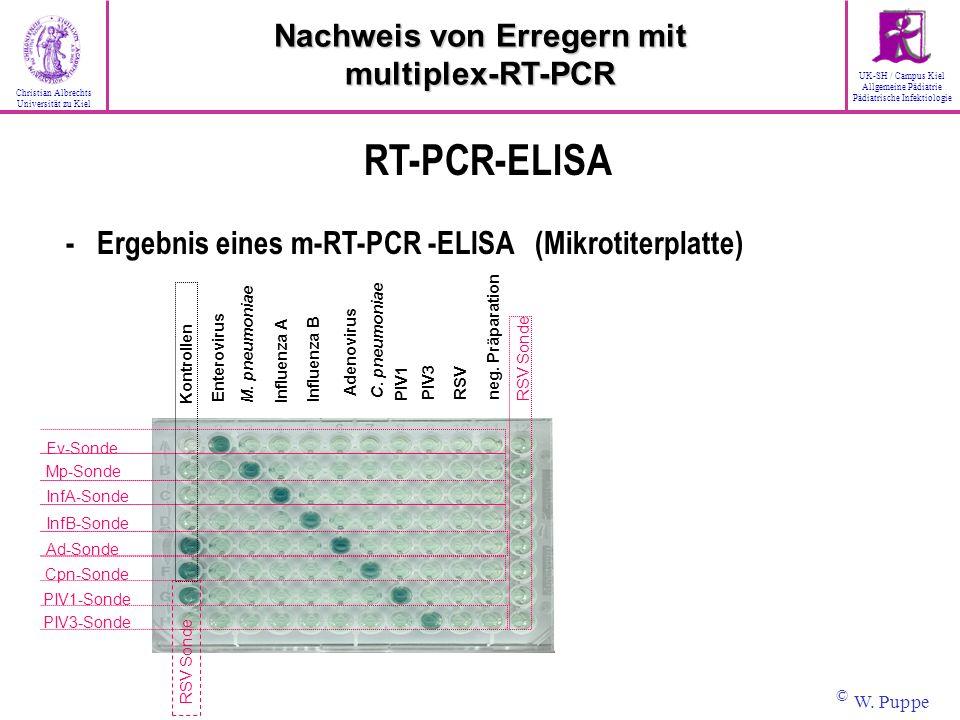 RSV Sonde Ev-Sonde Mp-Sonde InfA-Sonde InfB-Sonde Ad-Sonde Cpn-Sonde PIV3-Sonde PIV1-Sonde RSV Sonde Enterovirus M. pneumoniae Influenza A Influenza B