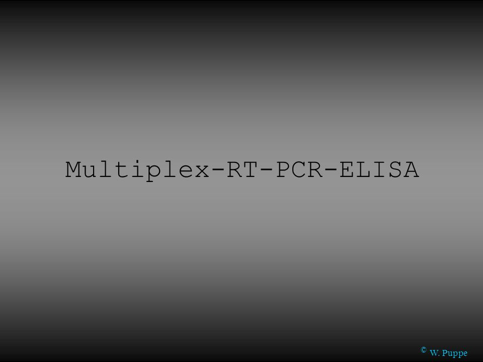 © W. Puppe Multiplex-RT-PCR-ELISA