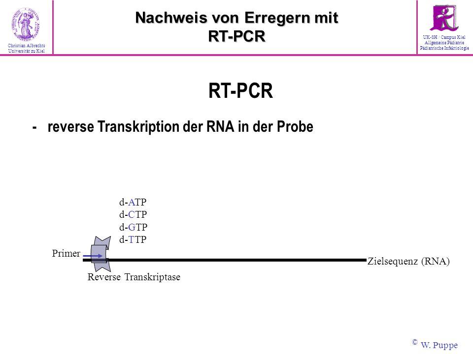 Zielsequenz (RNA) Primer Reverse Transkriptase d-ATP d-CTP d-GTP d-TTP RT-PCR - reverse Transkription der RNA in der Probe Nachweis von Erregern mit R