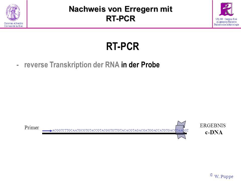 Primer ACGGTCTTGCAATGCGTGTACCGTACGGTGTTGTACACGTAGACGATGGACCATGTGACGTAAGGT ERGEBNIS c-DNA RT-PCR - reverse Transkription der RNA in der Probe Nachweis