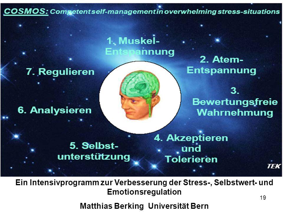 19 Ein Intensivprogramm zur Verbesserung der Stress-, Selbstwert- und Emotionsregulation Matthias Berking Universität Bern