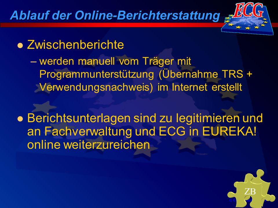 © ECG GmbH Berlin Zwischenberichte –werden manuell vom Träger mit Programmunterstützung (Übernahme TRS + Verwendungsnachweis) im Internet erstellt Ber